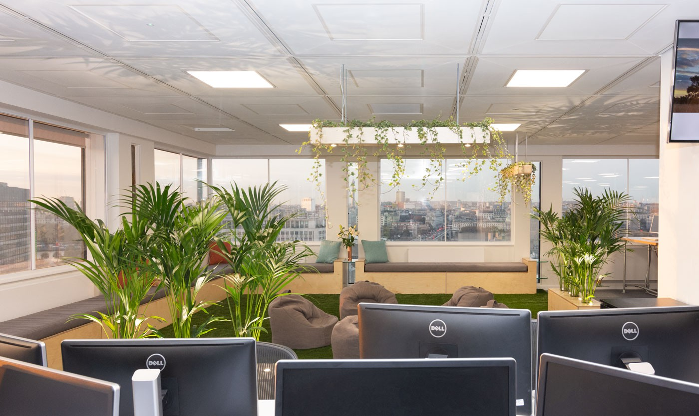 The view of the InfoTrack office garden from one of the workstation seating area when looking over the desktop computer
